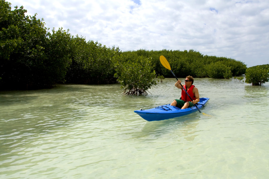 Key West Kayaking Adventures